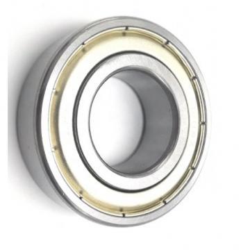 NSK, SKF, Koyo, NACHI, Kbc, IKO, Hrb, Mcgill Deep Groove Ball Bearing 6205zz, 6205-2RS1, 6205VV, 6205DDU for Electrical Motor