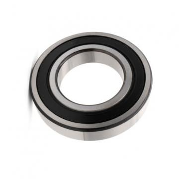 Double row Taper Roller Bearing 10979/710 3519/710