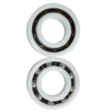 SL04 5014-PP-2NR Full Complement Cylindrical Roller Bearing