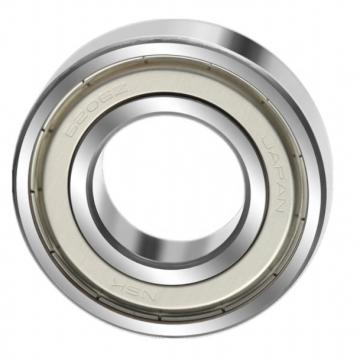 Full Complement Cylindrical Roller Bearing SL04 5011 SL04 5012 SL04 5013 SL04 5014 PP