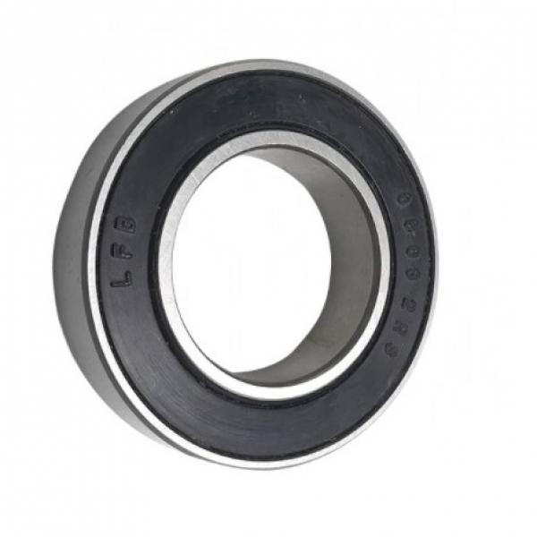 NSK Cylindrical Roller Bearings Nj205-E-M1-C3 (SKF NSK Timken Nj202/Nj203/Nj204/Nj205/Nj206/Ecp/Ecj/Ecm/C3 Nj205em Nj205ec3 Nj205 Nj205 Nj206 Nj207 Nj208) #1 image