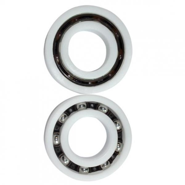 SL04 5014-PP-2NR Full Complement Cylindrical Roller Bearing #1 image
