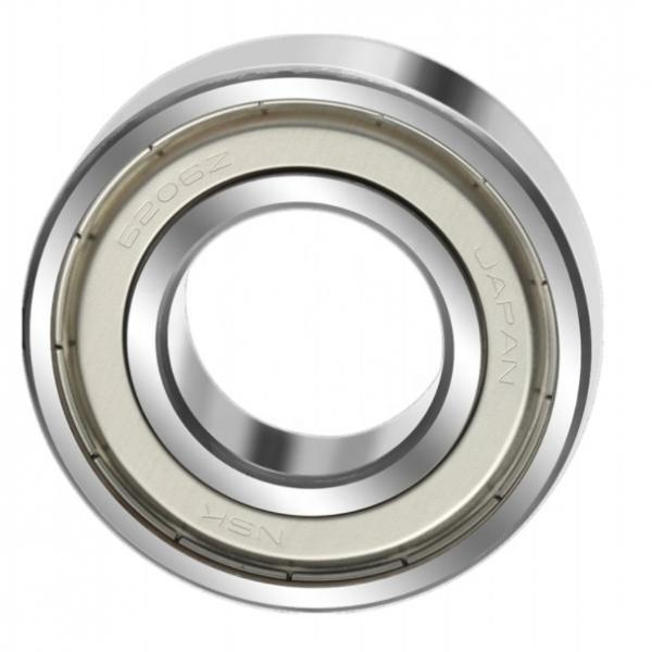 SL04 5014 PP Double Row Size 70x110x54 mm Full Complement Cylindrical Roller Bearing SL045014PP #1 image